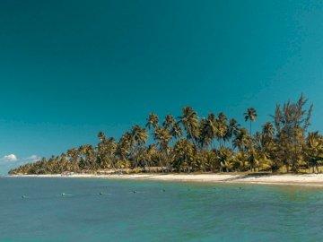Praia dos Carneiros, PE - Inselfoto. Goiânia, Brasilien. Ein großes Gewässer.