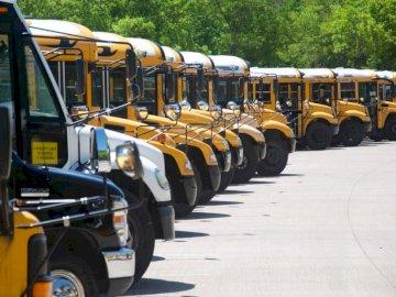 Autobusy szkolne - Żółty autobus szkolny na drodze podczas dnia. DFW, Teksas. Żółty autobus szkolny zaparkowany n