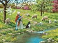 Wypas owiec. - Układanka: wypas owiec. Grupa owiec jedzenia trawy w słoneczny dzień.