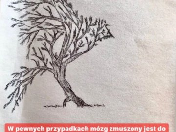 Bird / tree - Look at the picture twice. A close up of text on a white background.