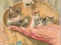 čtyři kočky v košíku