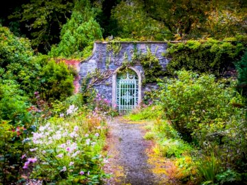 A gate to a secret garden - A gate to a secret garden. A house with bushes in the middle of a lush green forest.