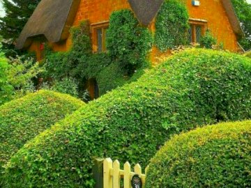 English landscape. - Thatched English cottage. A garden in front of a house.