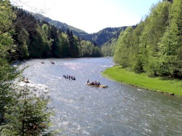 Dunajec gorge - Photo from the Dunajec gorge on the Slovak side of the river - from the bike path. A boat on a river