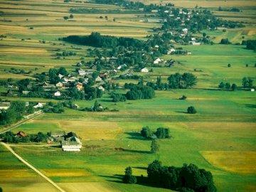 Paisaje polaco - tierras bajas - Paisaje de tierras bajas: plano o casi plano, gran forma de relieve. Una manada de ganado pastando e