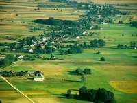 Lengyel táj - alföld - Alföldi táj - lapos vagy csaknem sík, a landform kiváló formája. Egy állomány szarvasmarha l