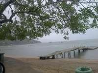 SAMBAQUI, FLORIANOPOLIS ISLAND - FISHING VILLAGE IN SANTA CATALINA, BRAZIL. A tree next to a body of water.