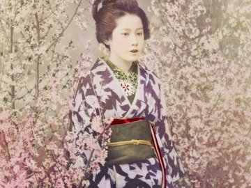 Japanese art - Woman among cherries, puzzle art. A young girl in a dress shirt and tie.