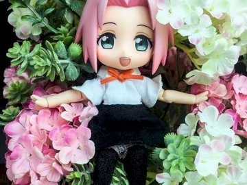 Sakura in the middle of hydrangeas - Sakura in the middle of hydrangeas. A girl in a pink flower on a plant.