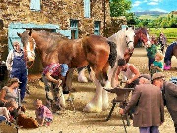 Podkuwanie koni u kowala. - . Grupa ludzi stojących obok krowy.
