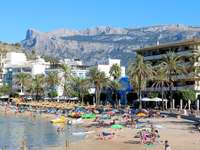 Majorka Port de soller - . Zatłoczona plaża z palmami i budynkiem w tle.