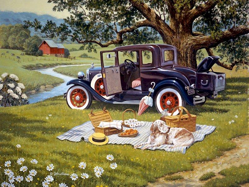 from-évszakok múlt - Egy autó, egy füves területre, a háttérben a fákkal (14×15)