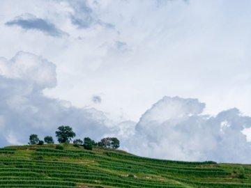 Cloud, nature - .