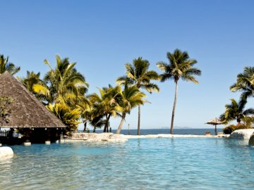 tropics_pool_bungalow_hotel_ - . Grupa palmy obok akwenu.