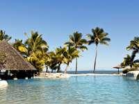 tropics_pool_bungalow_hotel_
