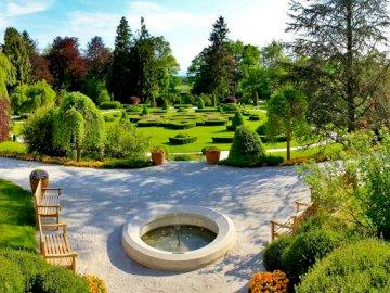 fountain_benches_garden_center - . A green plant in a garden.