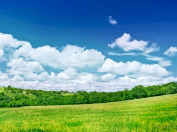 greens_meadow_trees_clouds - . A bliska, bujne zielone pole.