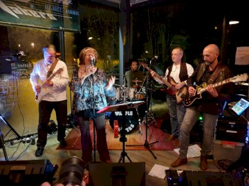 Blues Band Musician Group - . A group of people playing instruments and performing on a stage.