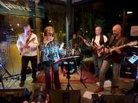 Blues Band Musician Group - . Eine Gruppe von Menschen, die Instrumente spielen und auf einer Bühne auftreten.