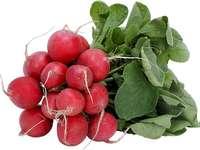 ředkvičky - To je čerstvá ředkev. Hromadu čerstvého ovoce a zeleniny.