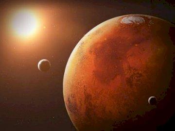 Mars czerwona planeta - Mars czerwoną roślinę i jej księżyce.