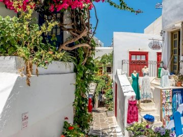 Beau soleil sur Naxos - L'île de Naxos, Grèce en plein soleil. Un bâtiment avec une fleur violette.