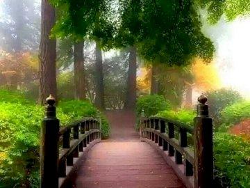 Un puente en el parque. - Un puente de madera en el parque. Un camino con árboles al lado de un edificio.