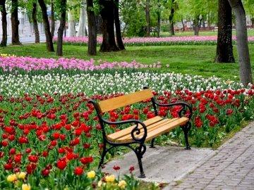 Paisaje del parque - Parque. Un banco entre flores. Un banco de parque vacío sentado en medio de un jardín de flores.