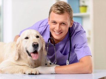 vet - Attention concentration, hand-eye coordination exercises, manual. A smiling boy with a dog.
