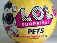 lol supriay animal equal to animal - I have a pet lol no matter I already lost it. A black and yellow ball.
