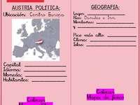 puzzle austria 1 - seconda opzione del nostro abp. Uno screenshot di un telefono cellulare.