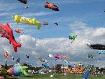 Internationales Drachenfestival - Internationales Drachenfestival. Eine Gruppe von Menschen, die Drachen in den Himmel fliegen.