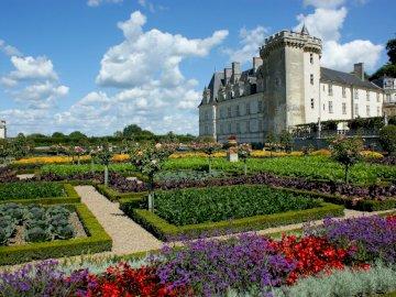 Villandry Castle - visiting the Loire Valley. A close up of a flower garden in front of a castle with Château de Villa