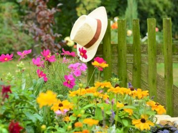In the Garden, Flowers, Fence, Hat - Flowers, fence, hat in the garden. A close up of a flower garden.