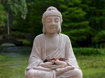 Paix et argent - Photographie de mise au point peu profonde de la statue de Bouddha Gautama. Katy, Texas, États-Unis