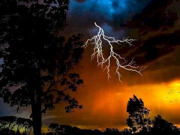Tempête. Décharges atmosphériques - Décharges atmosphériques. De beaux paysages. Un arbre avec un coucher de soleil en arrière-plan.