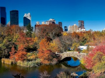 New York - Central Park in autumn colors. A body of water with a city in the background.