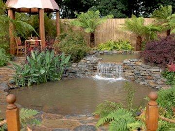 pond_arbor_falls_garden_registration - pond_arbor_falls_garden_registrat. Ogród z wodą w tle.