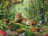 Βασιλιάς της ζούγκλας