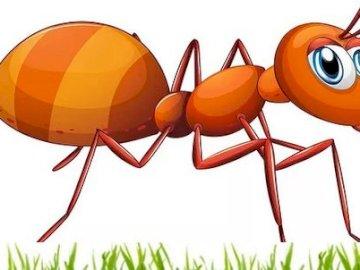 Eine kleine Ameise auf dem Feld - Für meinen Jeżków. Testen Sie sich selbst, setzen Sie die Rätsel zusammen und Sie werden sehen,