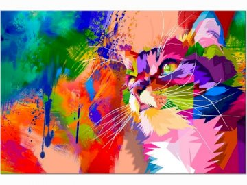 Colorful cat (Image) - This is just a cat in the picture. I know it shouldn't be in animals, but it's an an