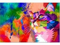 Kolorowy kot (Obraz)