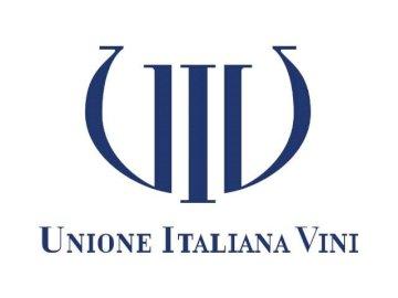 vinos de unión italiana - rompecabezas escrito vinos de unión italiana. Un dibujo de una cara.