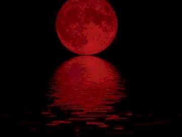 Enchanté par la lune la nuit - la lune a toujours englouti les gens. Un gros plan d'un logo.