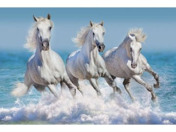 Heavenly Cherubs ?? - Super ponies. A bit like unicorns. More challenge than my last puzzle. A horse running through water