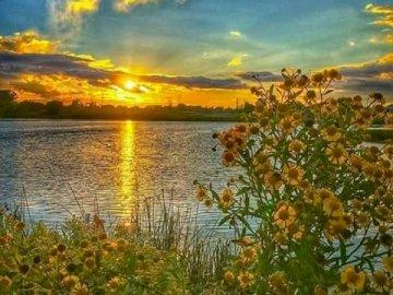 La bellezza del mondo. - Paesaggio. Puzzle: la bellezza del mondo. Un giallo tramonto su uno specchio d'acqua.