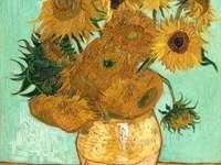 A Napfényvirágok