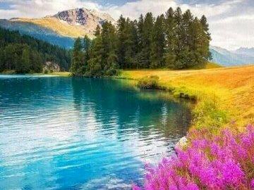Uno splendido paesaggio. - Puzzle: bellissimo paesaggio. Uno specchio d'acqua circondato da alberi.