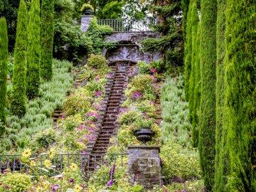 Park Mainau - ogród - kwiaty, drzewa --------------------. Drzewo w środku lasu.