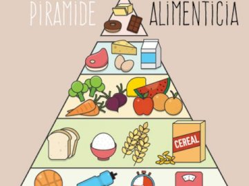 Food pyramid - Build the food pyramid.